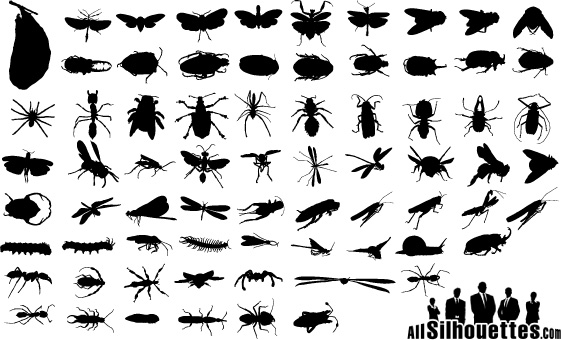 free vector Vector silhouette of various insect material
