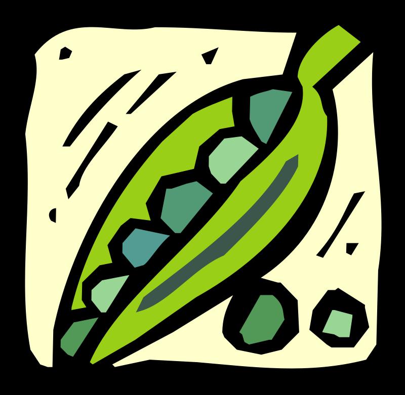 free vector Vegetables 15