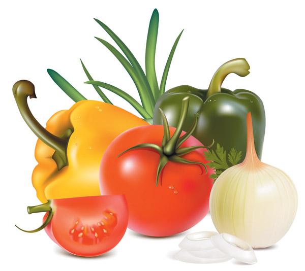 Vegetables vector Free Vector / 4Vector