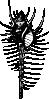 free vector Venus Comb clip art