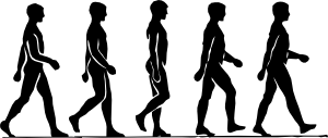 free vector Walking Person Silhouette clip art