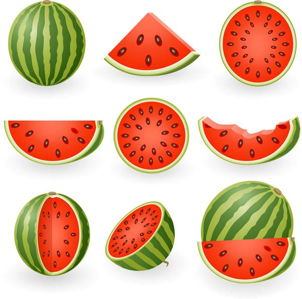 free vector Watermelon clip art 5351