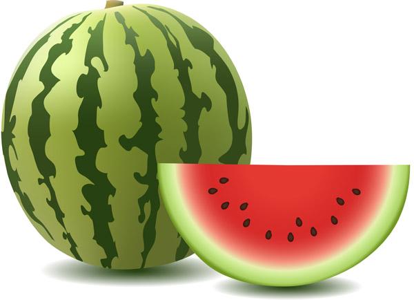 free-vector-watermelon-clip-art_005351_2.jpg (600×434)