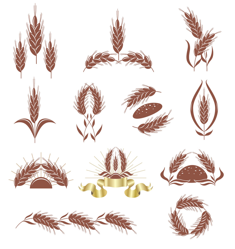 free vector Wheat 02 vector