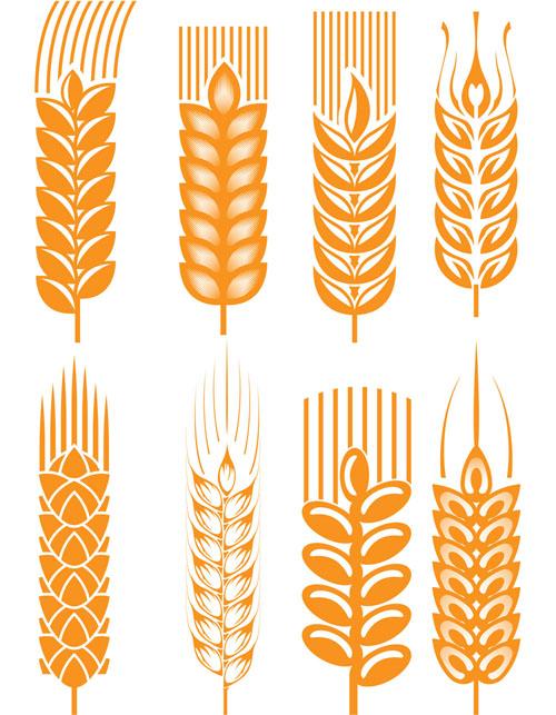 free vector Wheat 03 vector