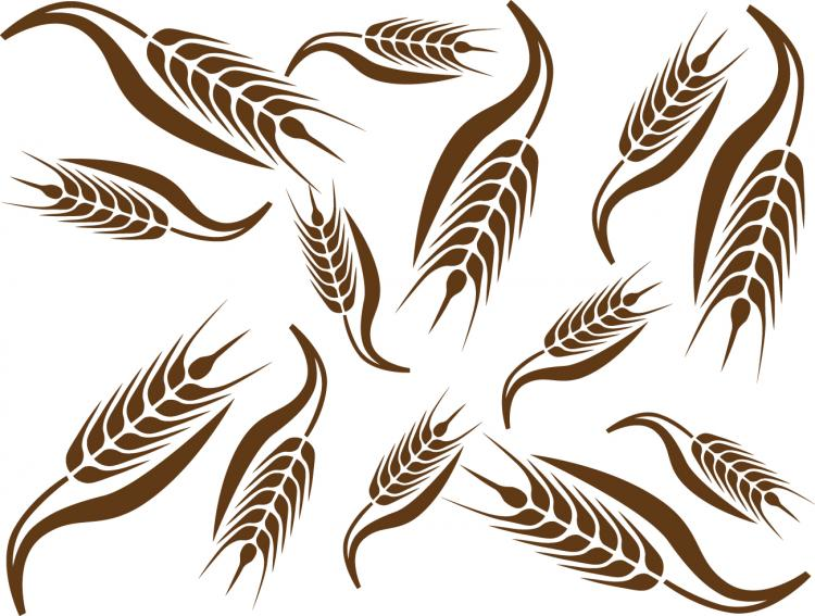 Wheat pattern 02 vector Free Vector / 4Vector