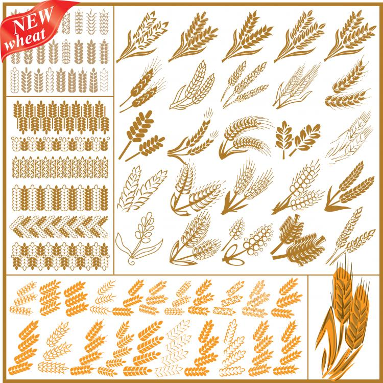 free vector Wheat pattern 04 vector