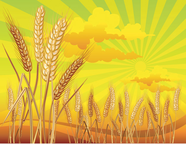 Wheat theme (4342) Free EPS Download / 4 Vector