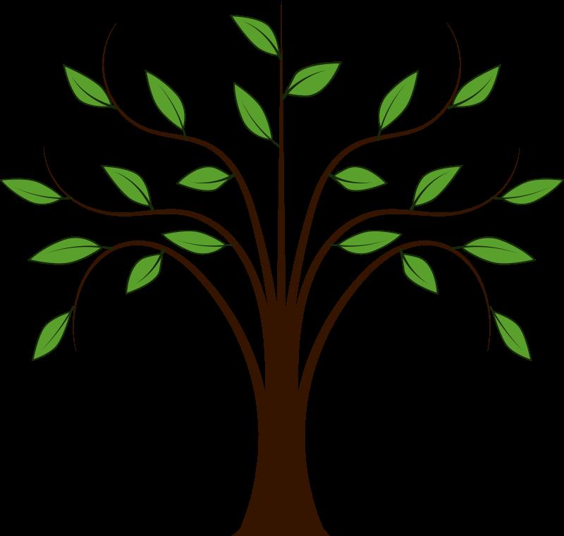 whispy tree free vector 4vector rh 4vector com tree vector image tree vector image