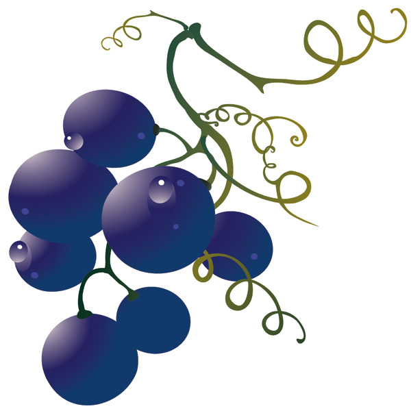 free vector Wine and Grape Vectors