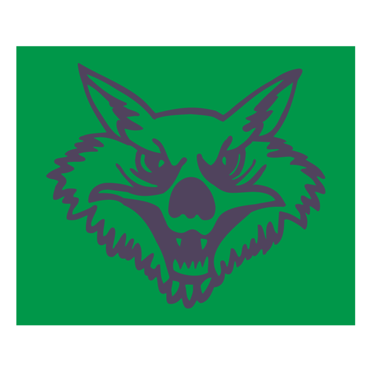 free vector Wolf flying group