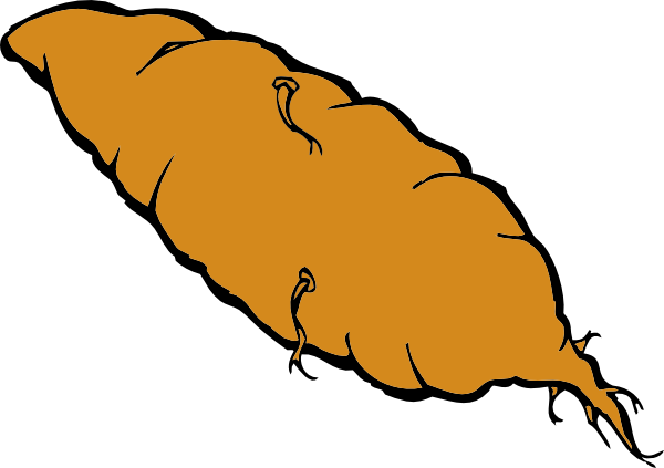 Image result for CLIPART SWEET POTATO