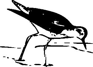 free vector Yellow Leg Bird clip art