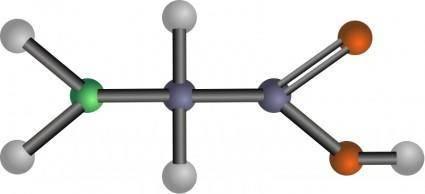 Glycine (amino acid)