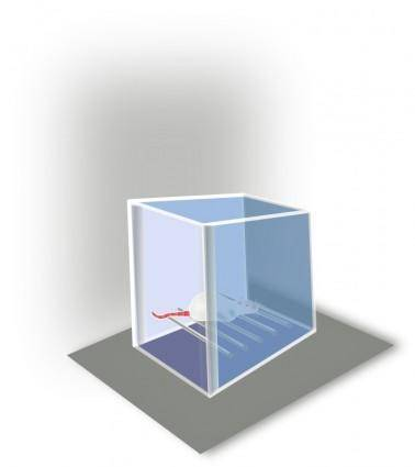 Conditioning Box