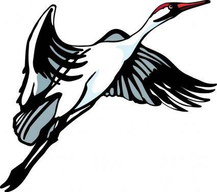 Bird 34