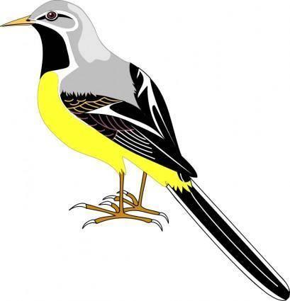 free vector Bird 23