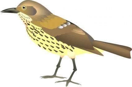 free vector Bird 14
