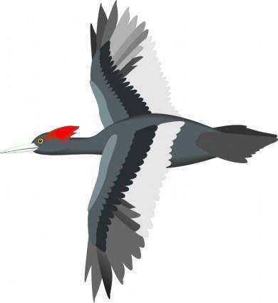 free vector Bird 13