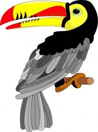 free vector Bird 07