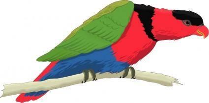 Bird 56