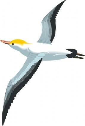 free vector Bird 45