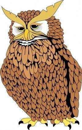 Bird 37