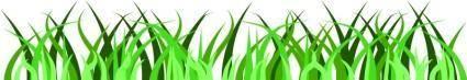 Grass 99791
