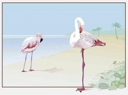 free vector Flamingo Vector