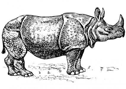 free vector Rhino