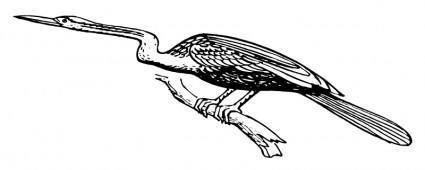 Snakebird