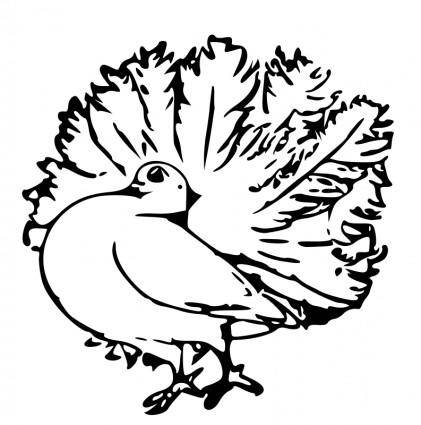 free vector Pigeon 4