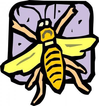 free vector Insect 07