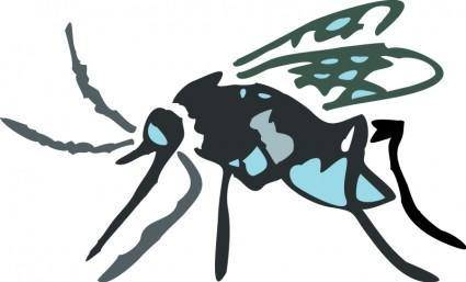 free vector Insect 05