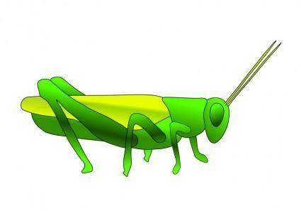 free vector Grasshopper