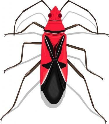 free vector Insect 27