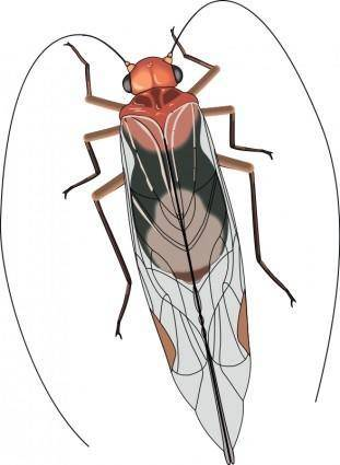 free vector Insect 26