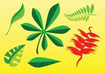 free vector Free Plant Images
