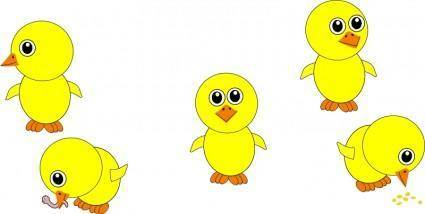 Funny Chicks Eating and in multiple positions Cartoon