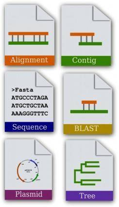free vector Bioinformatics Icon set