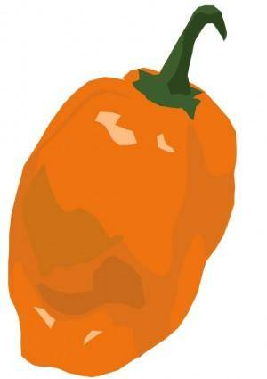 free vector Habanero pepper