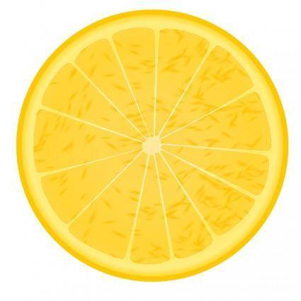free vector Orange slice