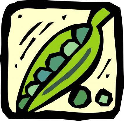 free vector Vegetables 15