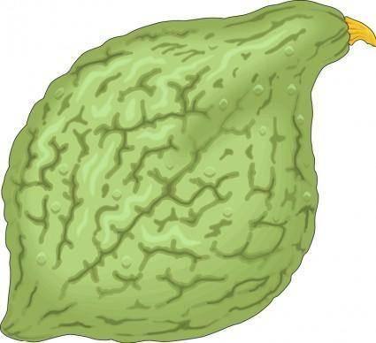 Vegetables 06