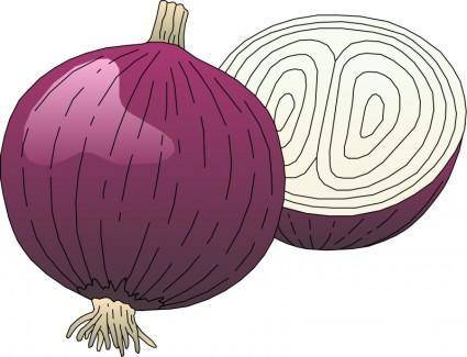 free vector Vegetables 05