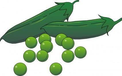 Vegetables 02