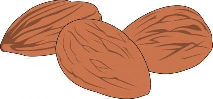 Nut 02