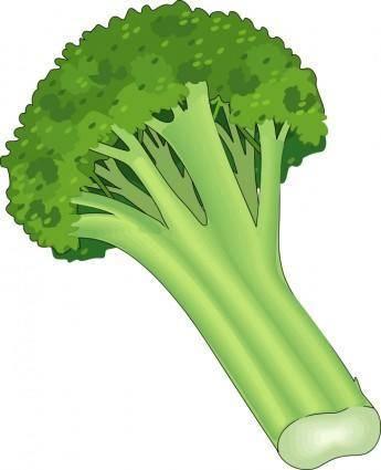 Vegetables 22