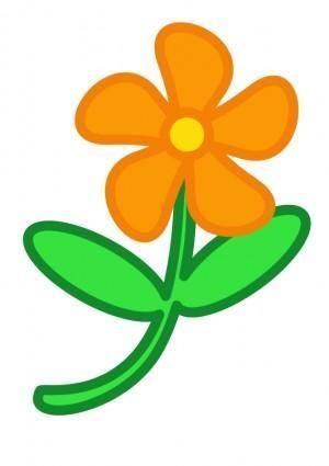 Flower peterm 01