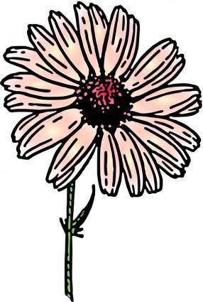 Colored daisy 2